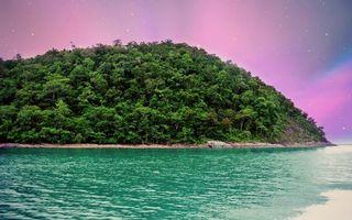 Бесплатные фото остров,океан,берег,деревья,лес