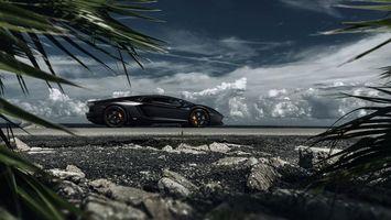 Бесплатные фото Чёрная Lamborghini,спорткар,берег,тучи,камни,растения