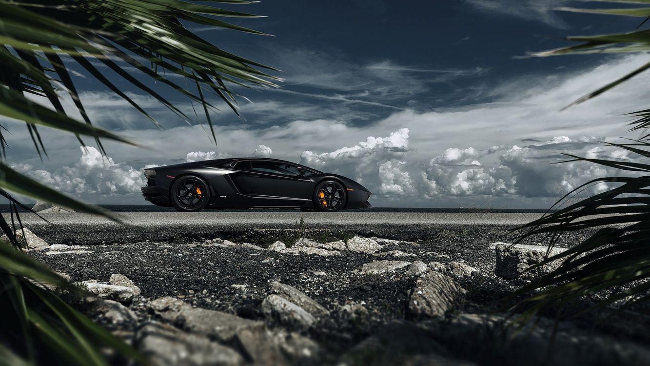 Обои Чёрная Lamborghini, спорткар, берег, тучи, камни, растения картинки на телефон
