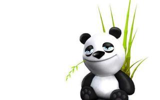 Фото бесплатно панда, морда, бамбук, фон, белый