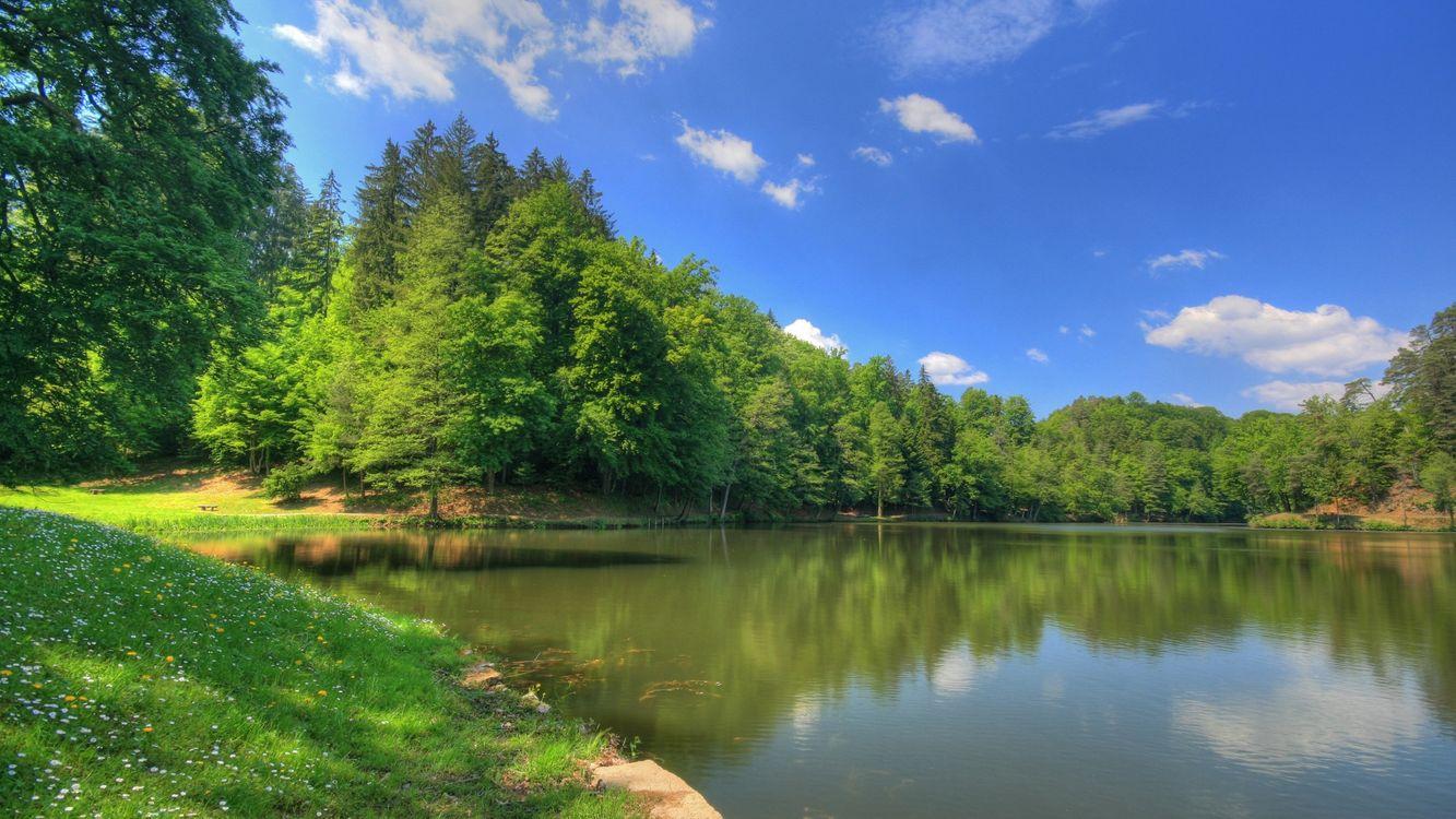 Фото бесплатно берег, трава, деревья, река, небо, облака, природа