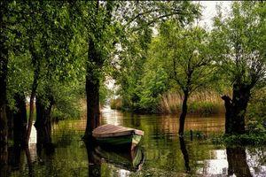 Фото бесплатно природа, Форарльберг, река