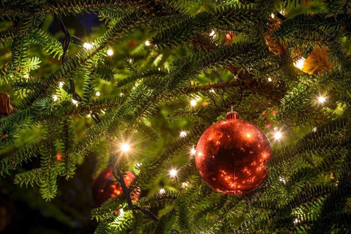 Фото бесплатно новогодняя ёлка, огни, гирлянды, игрушки, шары, новый год, новый год