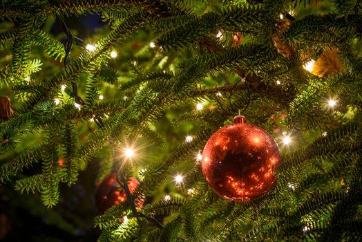 Фото бесплатно новогодняя ёлка, огни, гирлянды