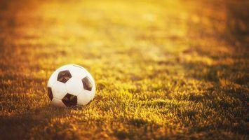 Фото бесплатно футбольный мяч, поле, трава