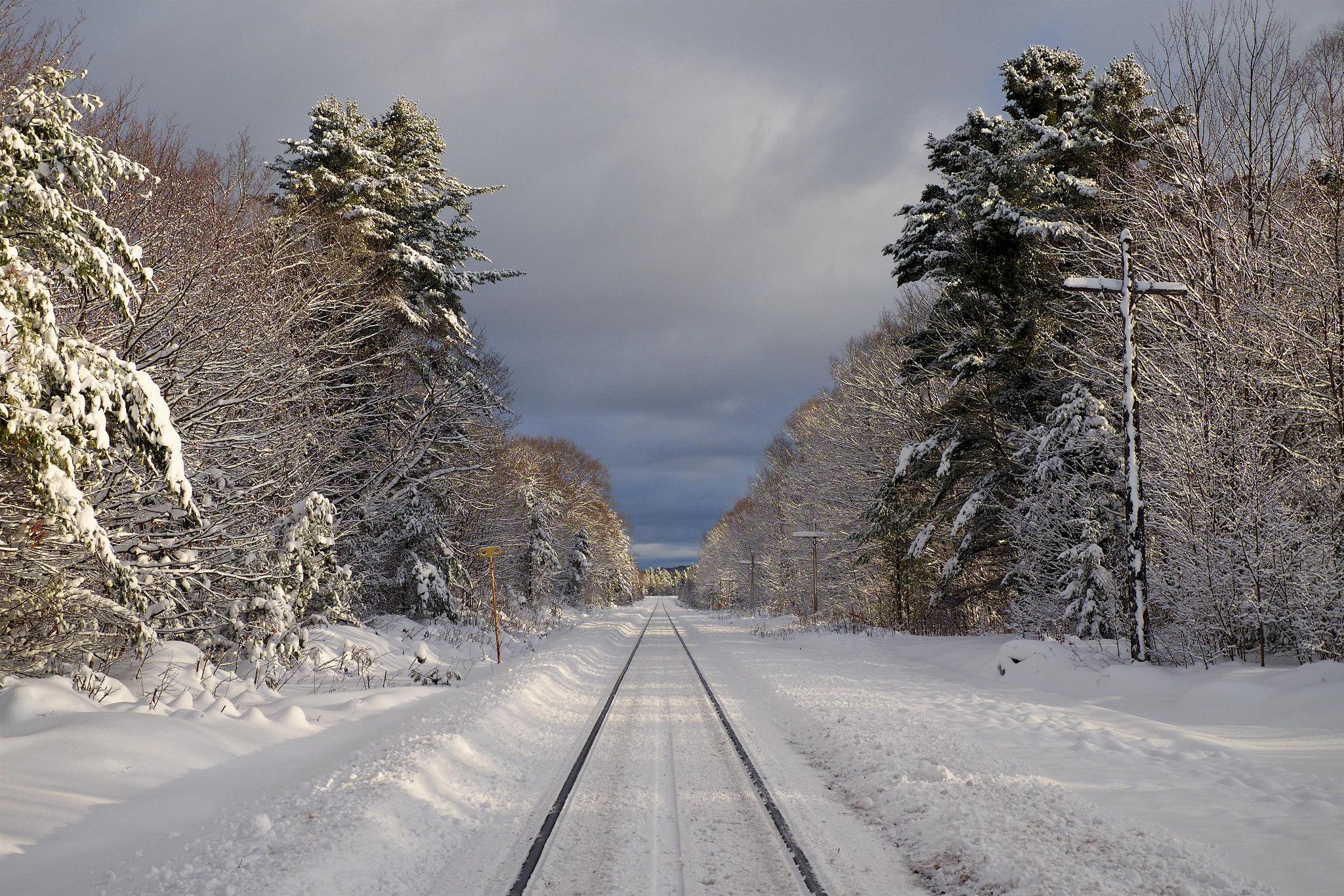обои зима, лес, деревья, железная дорога картинки фото