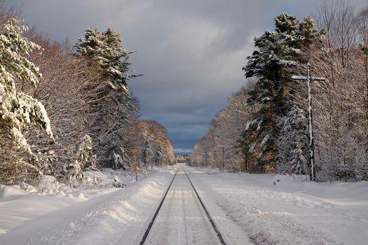 Фото бесплатно лес, железная дорога, зима