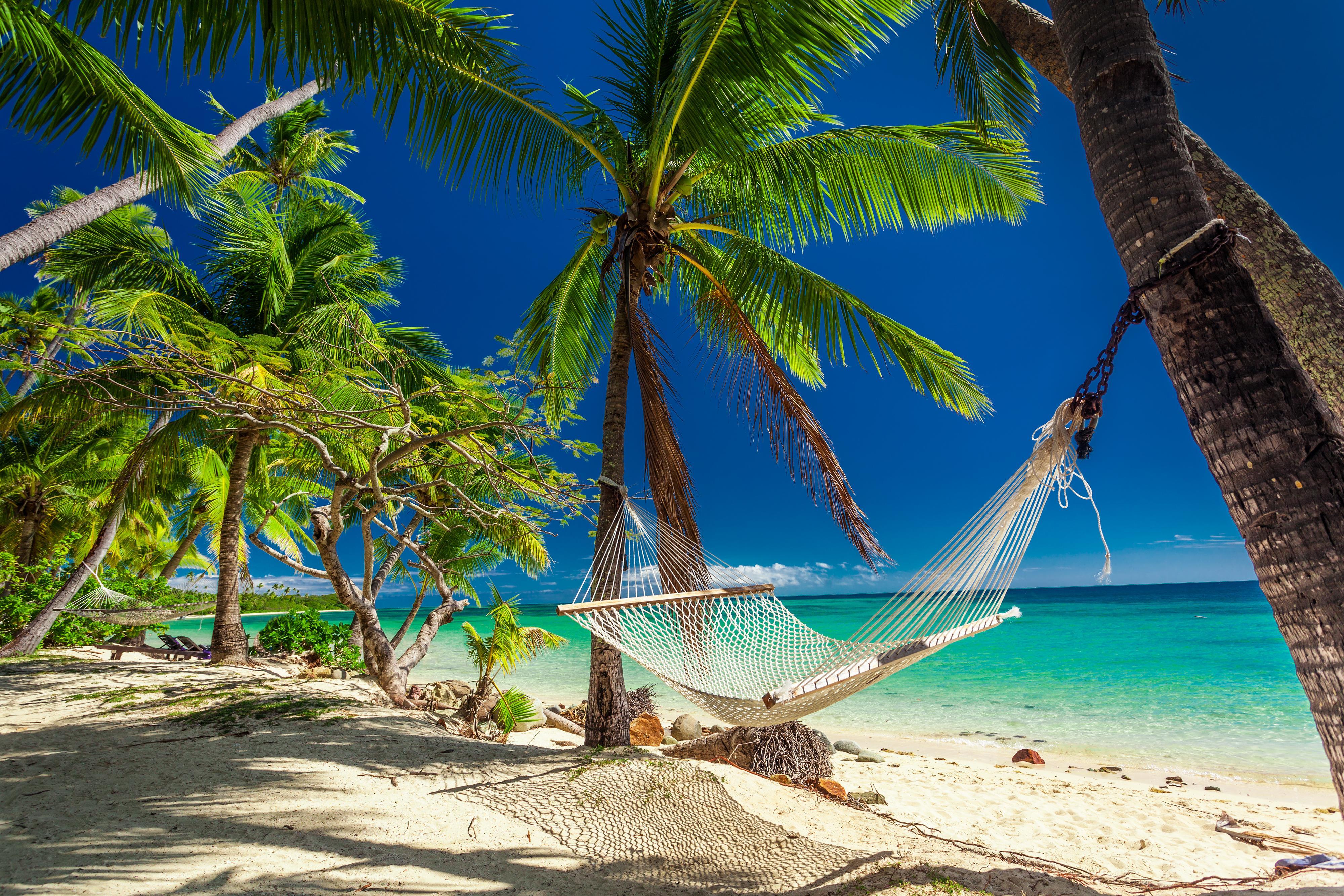 Фото гамак пальмы пляж - бесплатные картинки на Fonwall