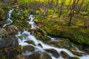 Фото бесплатно Лос-Гласиарес, Лагуна Торре, Аргентина