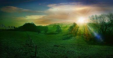 Бесплатные фото закат, поле, холмы, деревья, пейзаж