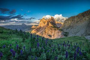 Обои цветы, закат, отблеск солнца на вершинах гор, свечение, небо, облака, доломиты, Альпы, горы