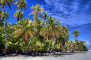 Фото бесплатно Французская Полинезия, Тихий океан, остров