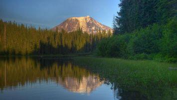 Фото бесплатно озеро, растительность, лес, деревья, гора, небо
