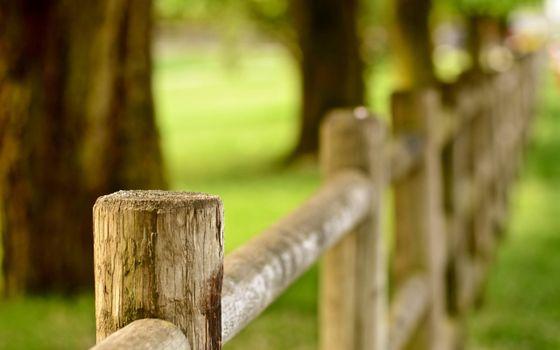 Фото бесплатно забор, ограждение, дерево