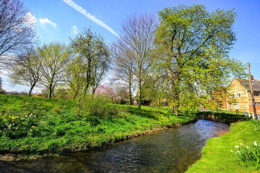 Фото бесплатно Англия, весна, река
