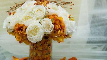 Бесплатные фото ваза,букет,композиция,лепестки,белые,желтые,веточки