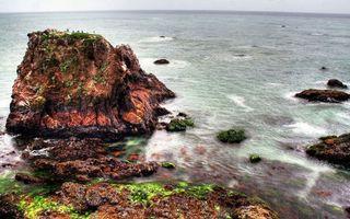 Бесплатные фото берег,камни,рифы,мох,море,горизонт