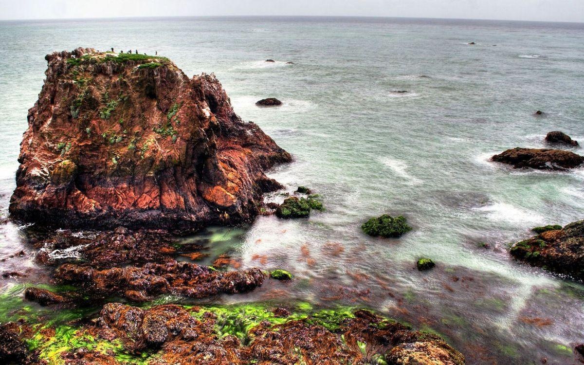 Фото бесплатно берег, камни, рифы, мох, море, горизонт, природа
