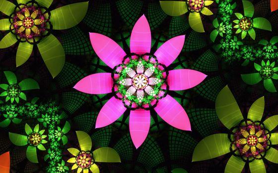 Фото бесплатно цветы, узоры, лепестки