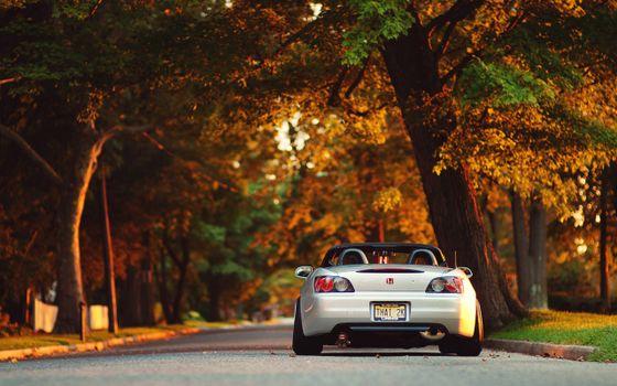 Бесплатные фото хонда,кабриолет,фонари,дорога,деревья