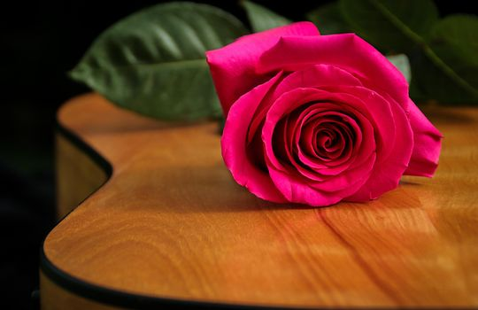 Фото бесплатно цветок, гитара, роза