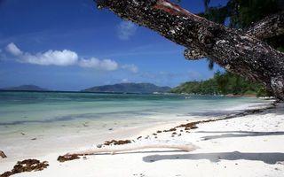 Заставки тропики, берег, море, песок, белый, растительность, природа