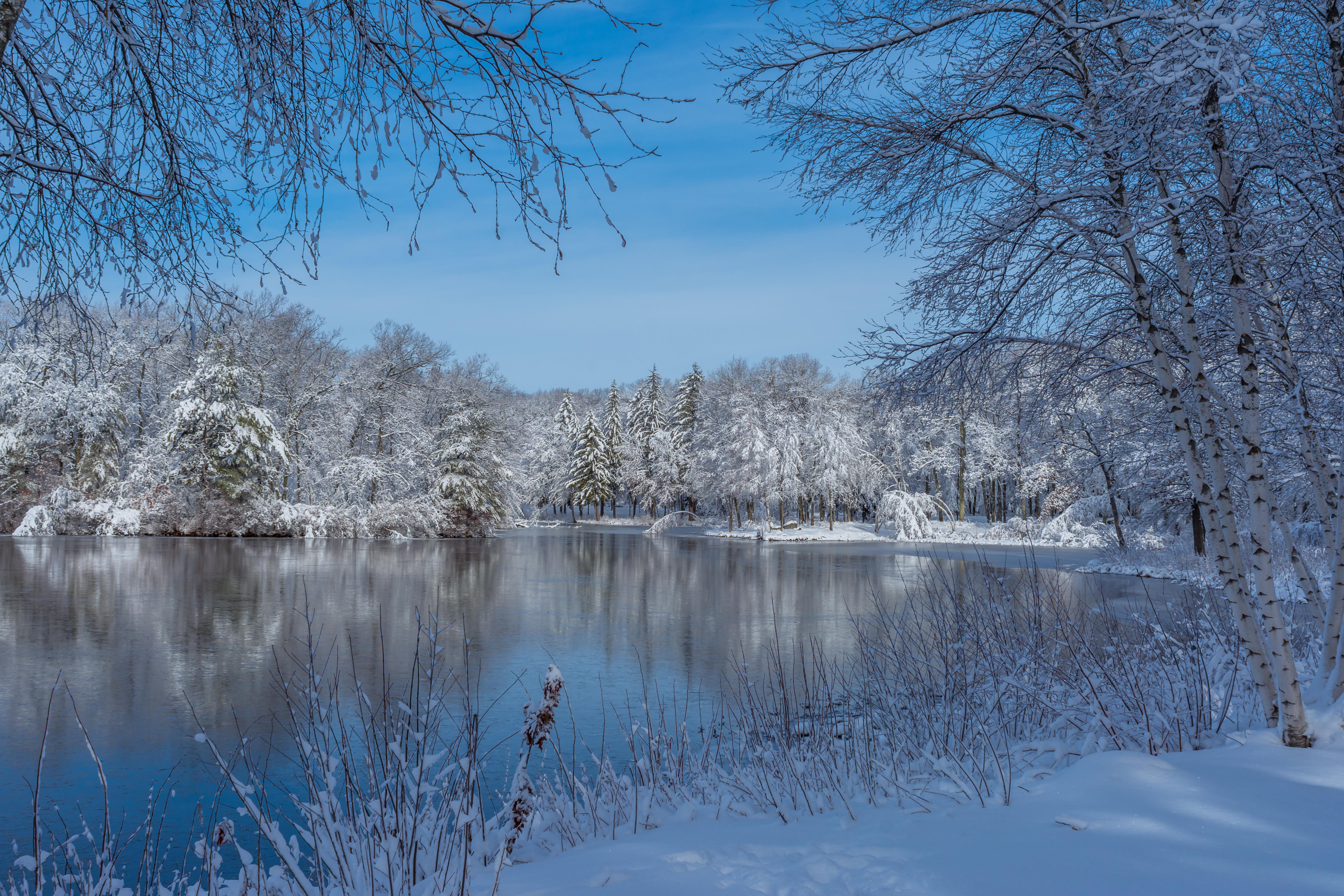 обои Броктон, Массачусетс, парк, зима картинки фото