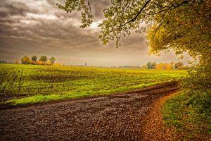 Фото бесплатно Овэрейссел, Нидерланды, поле