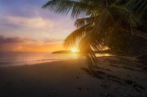 Бесплатные фото Порт Буало,Сейшельские острова,море,закат,пляж,берег,пальма