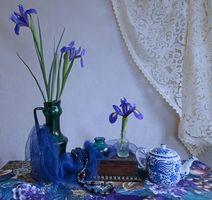 Бесплатные фото шкатулка,чайник,ваза,цветы,натюрморт