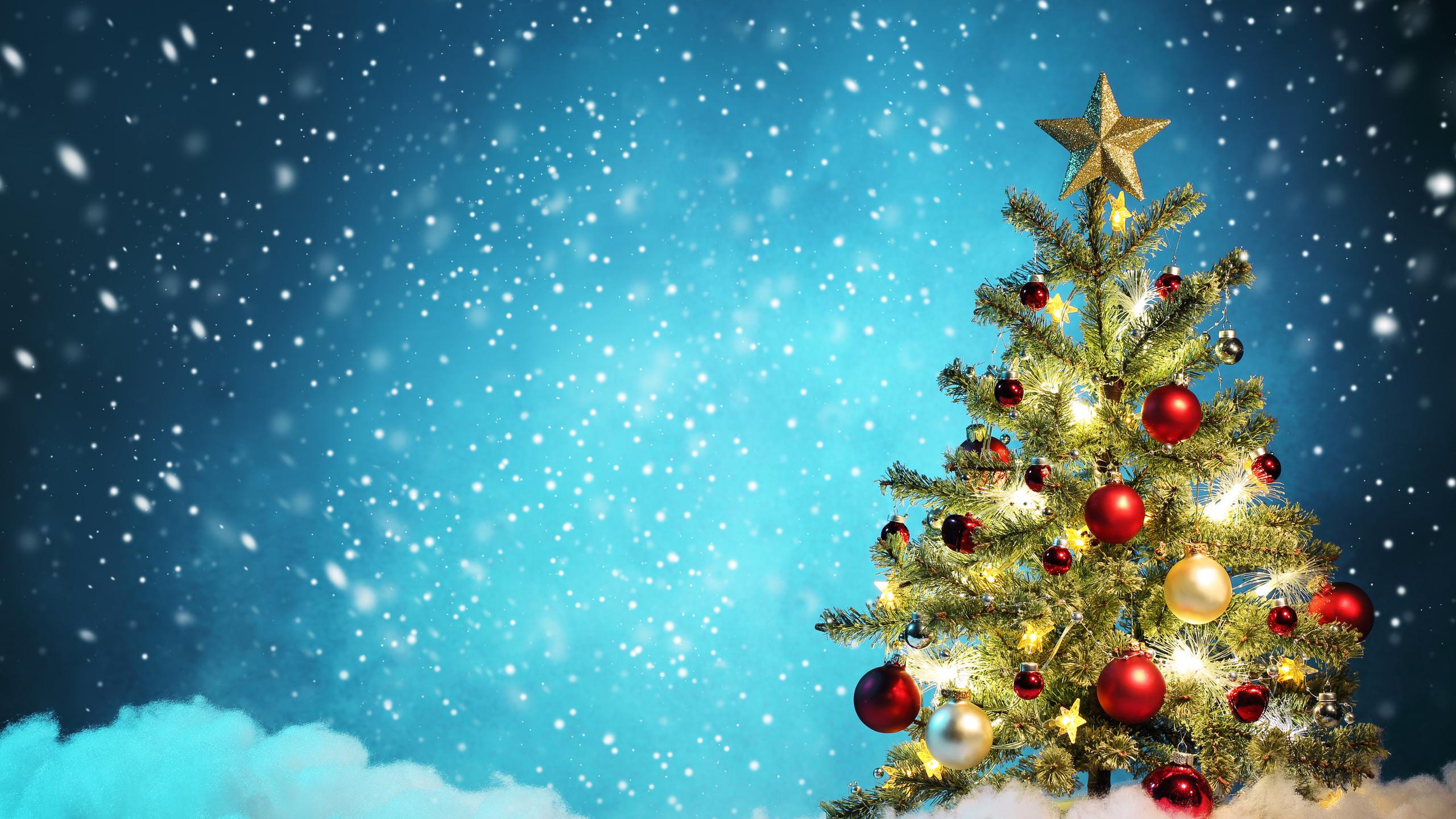 Три новогодние ели  № 1417036 без смс