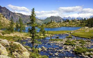 Бесплатные фото елки,берег,река,горы,трава,пейзажи
