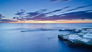 Фото бесплатно горизонт, облака, мох