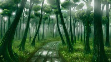 Фото бесплатно природа, дорога, кроны