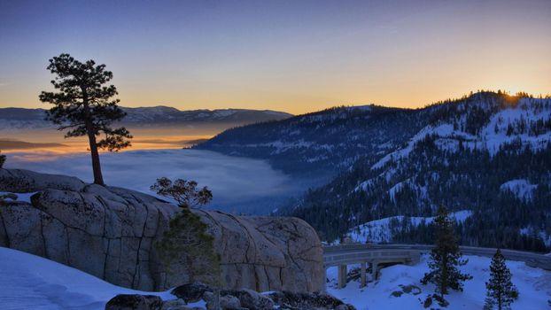 Бесплатные фото склон,снег,мост,туман,деревья,природа
