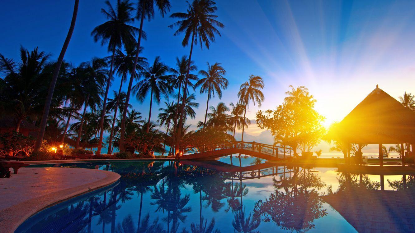 Фото бесплатно тропики, курорт, закат, солнце, бассейн, разное, разное