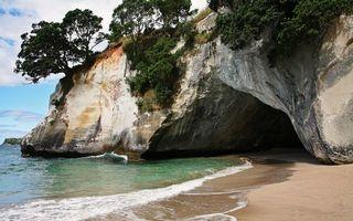 Бесплатные фото берег,моря,скала,пещера,песок,деревья,природа