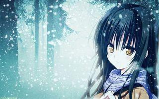 Бесплатные фото девочка,волосы,прическа,костюм,погода,снег,зима