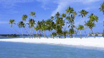 Заставки пальмы, островок, белый песок