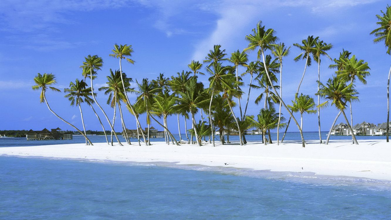 Фото бесплатно пальмы, островок, белый песок - на рабочий стол