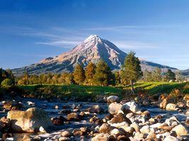 Бесплатные фото лес,деревья,горы,снег,зелень,трава,природа