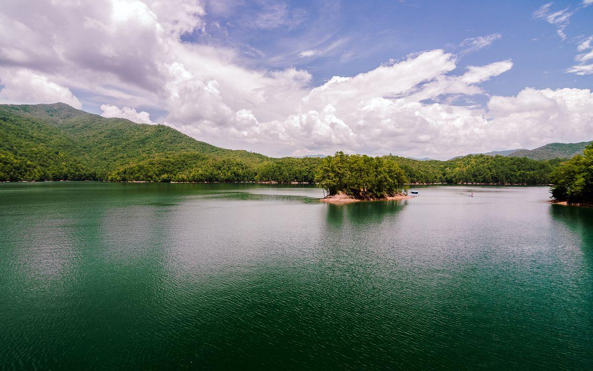Фото бесплатно вода, река, деревья, лес, небо, облака, природа, природа