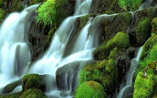 Бесплатные фото водопа,вода,кусты,трава,камни,река,мох