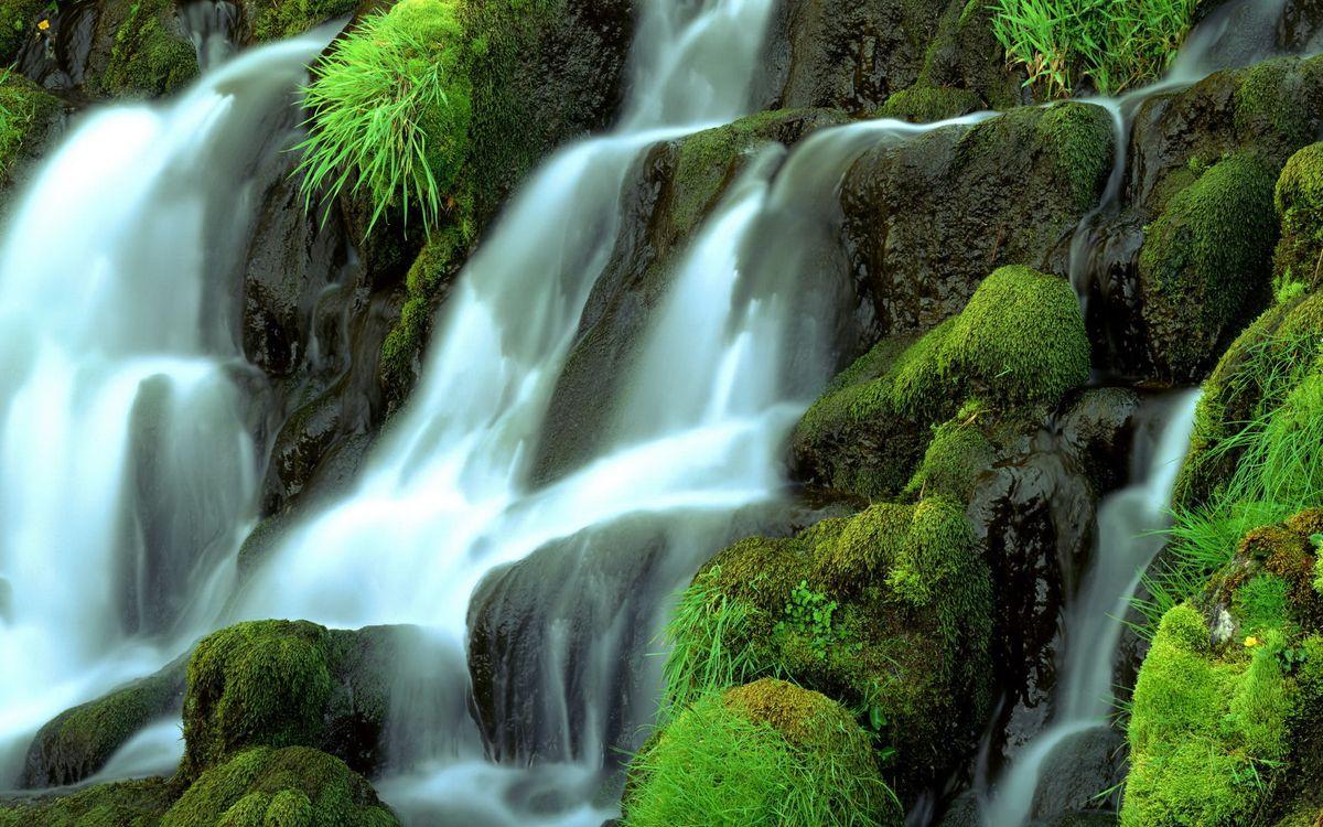 Фото бесплатно водопа, вода, кусты - на рабочий стол