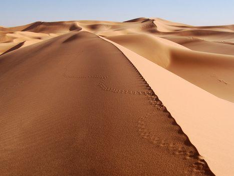 Фото бесплатно пустыня, песок, сахара