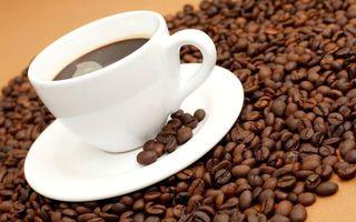 Обои кофе, чашка, зерно, тарелка, блюдце, пенка, бодрящий, черный, зерновой, молотый, напитки