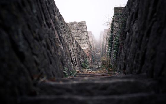 Фото бесплатно мох, бетон, траншея