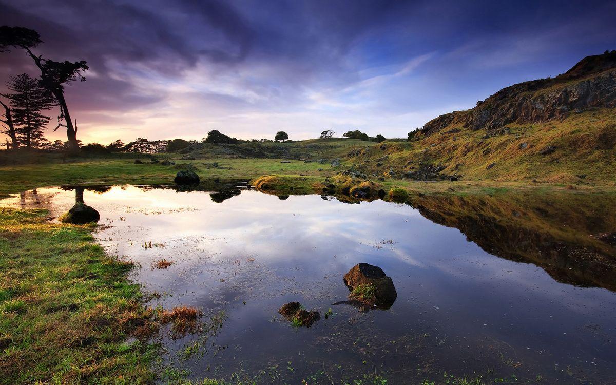Фото бесплатно река, море, озеро, вода, волны, лето, тепло, деревья, зелень, тучи, природа, пейзажи, пейзажи
