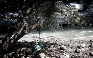 Бесплатные фото берег,море,волны,камни,дерево,качели,пейзажи