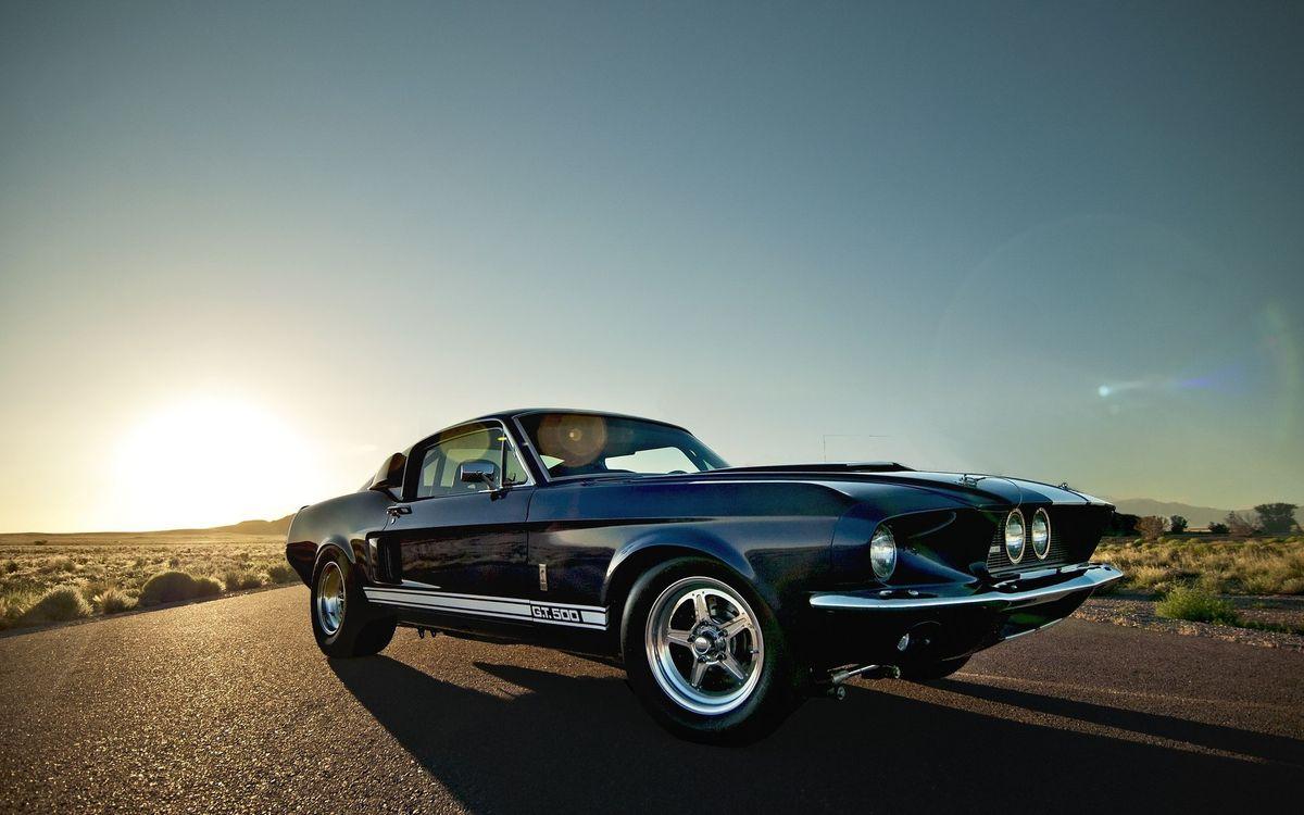 Фото бесплатно ford, mustang, gt500, shelby, темно, синий, дорога, асфальт, восход, солнце, машины, машины